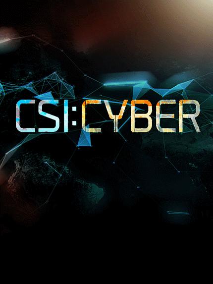 CSI: Cyber (2015-) 1,2ος Κύκλος