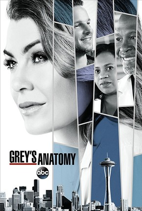 Grey's Anatomy (2005-) TV Series