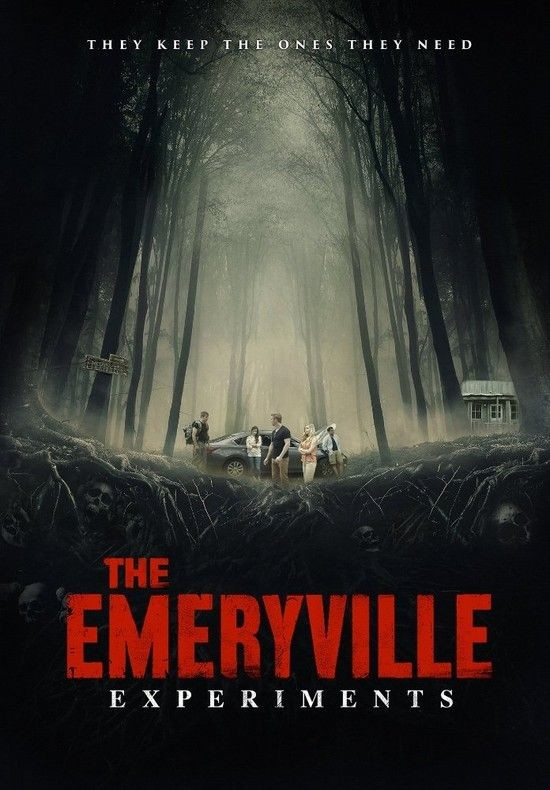 Emeryville / Village of the Insane (2016)