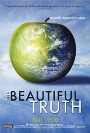 The Beautiful Truth (2008)