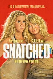 Snatched / Όμηροι Διακοπών (2017)
