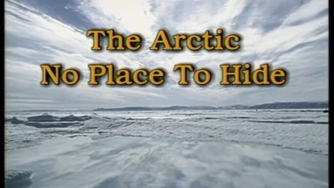 The Arctic No place to hide - H Ζωή στην Αρκτική